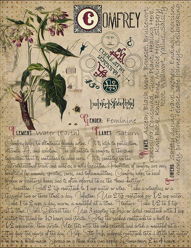 gyógynövények datura a parazitákból elpusztulnak a paraziták tünetei