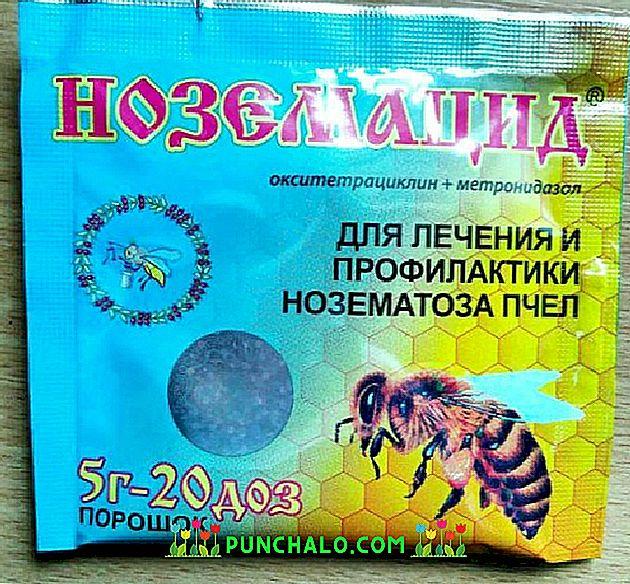 méh parazita orvosság a legjobb gyógymód a férgek ellen