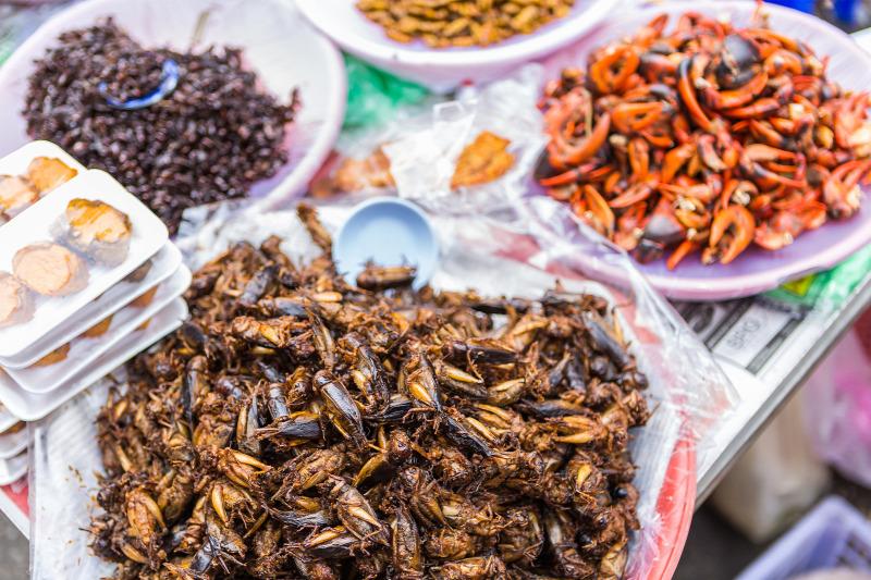 Fűszeres ételek férgekből. Fűszerek parazitákból - Az olaj