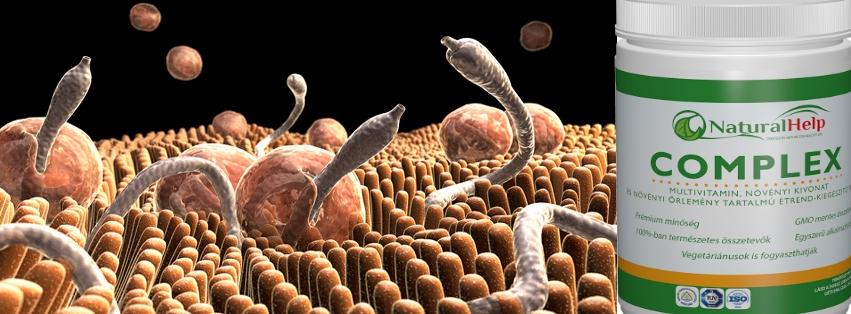 népi gyógyszer a paraziták ellen a testben