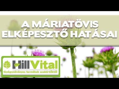 gyógynövény férgek számára)