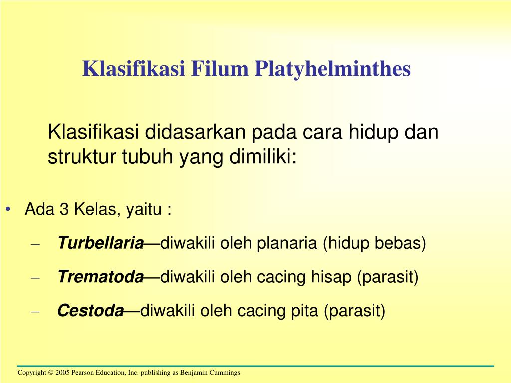 cacing platyhelminthes. ppt)
