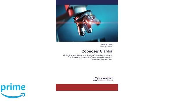 Giardiasis felnőttek gyógyszeres kezelési áttekintése