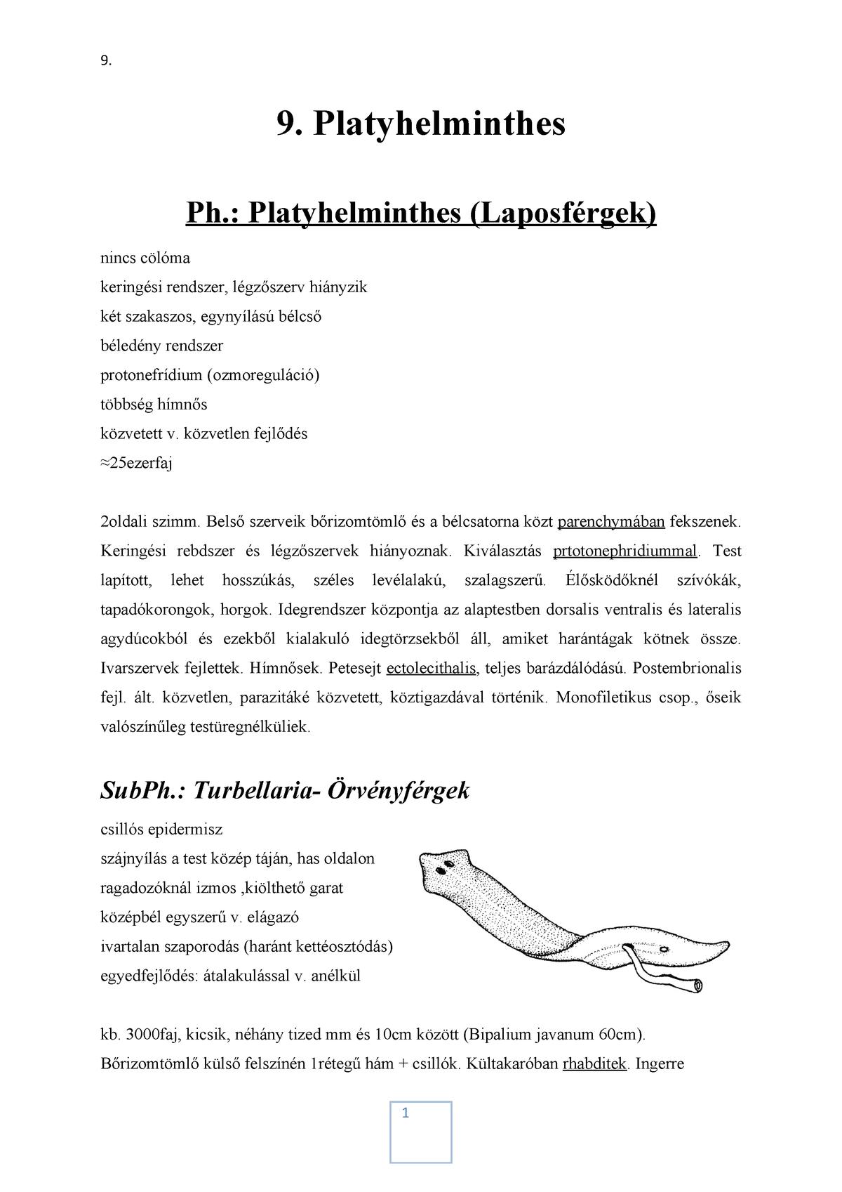 Laboratóriumi diagnosztikai módszerek helmintiasákra Májfluke fejlődési ciklus
