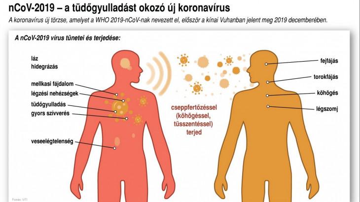 a trichinózissal való fertőzés forrása lehet