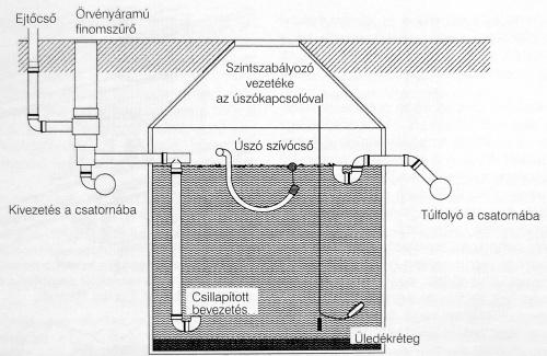 a parazita test hatékony tisztításának módjai)