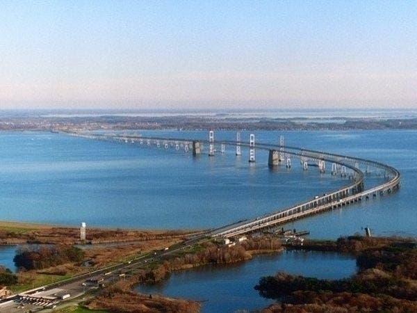 Chesapeake-öböl retriever kutyafajta tények és információk - Fajták - 2020