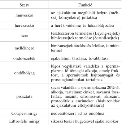 ureaplasma normális mutatók férfiakban