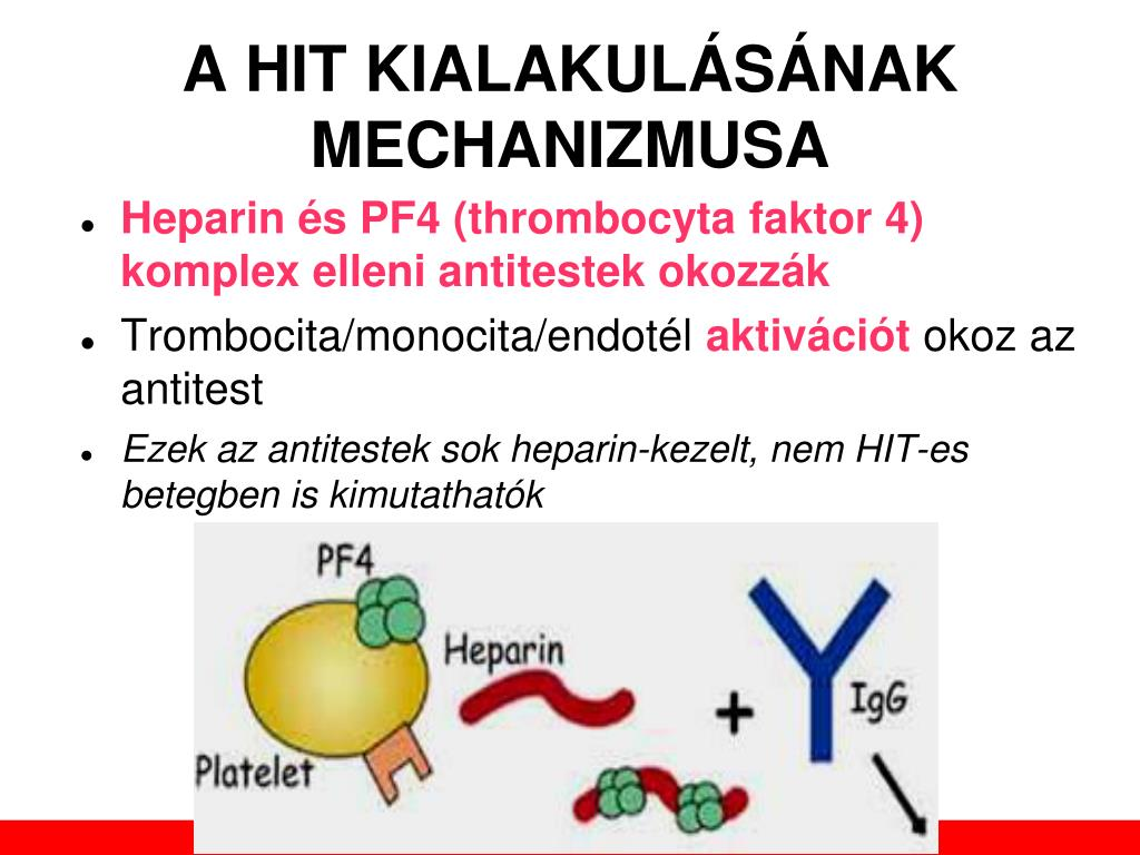 kerekférgek elleni antitestek