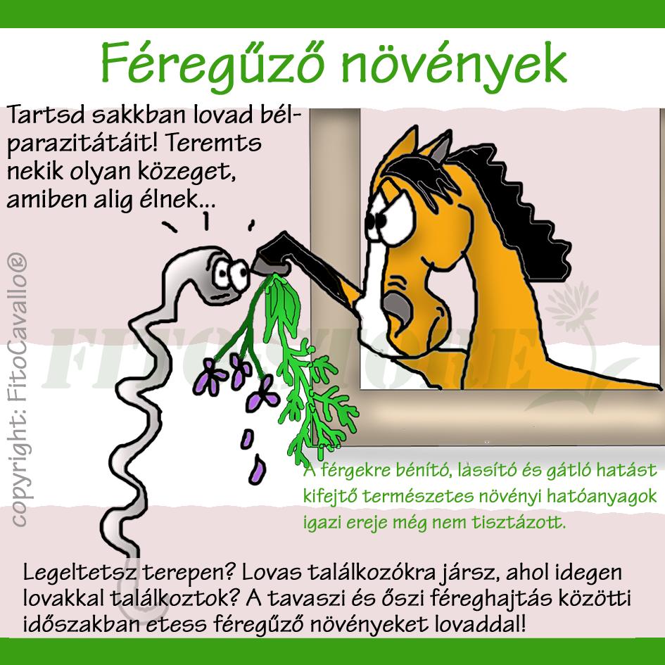 termeszetes féreghajtok embernek)