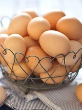 A helminth tojások morfológiája. Helminth pitypang
