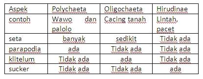 klassifikasi nemathelminthes dan annelida)