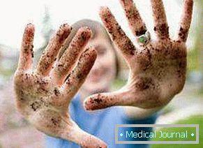 Emberi férgek a kerekférgek tünetei Kerek férgek jelei a testben