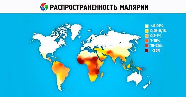 Plasmodium malária és annak életciklusa