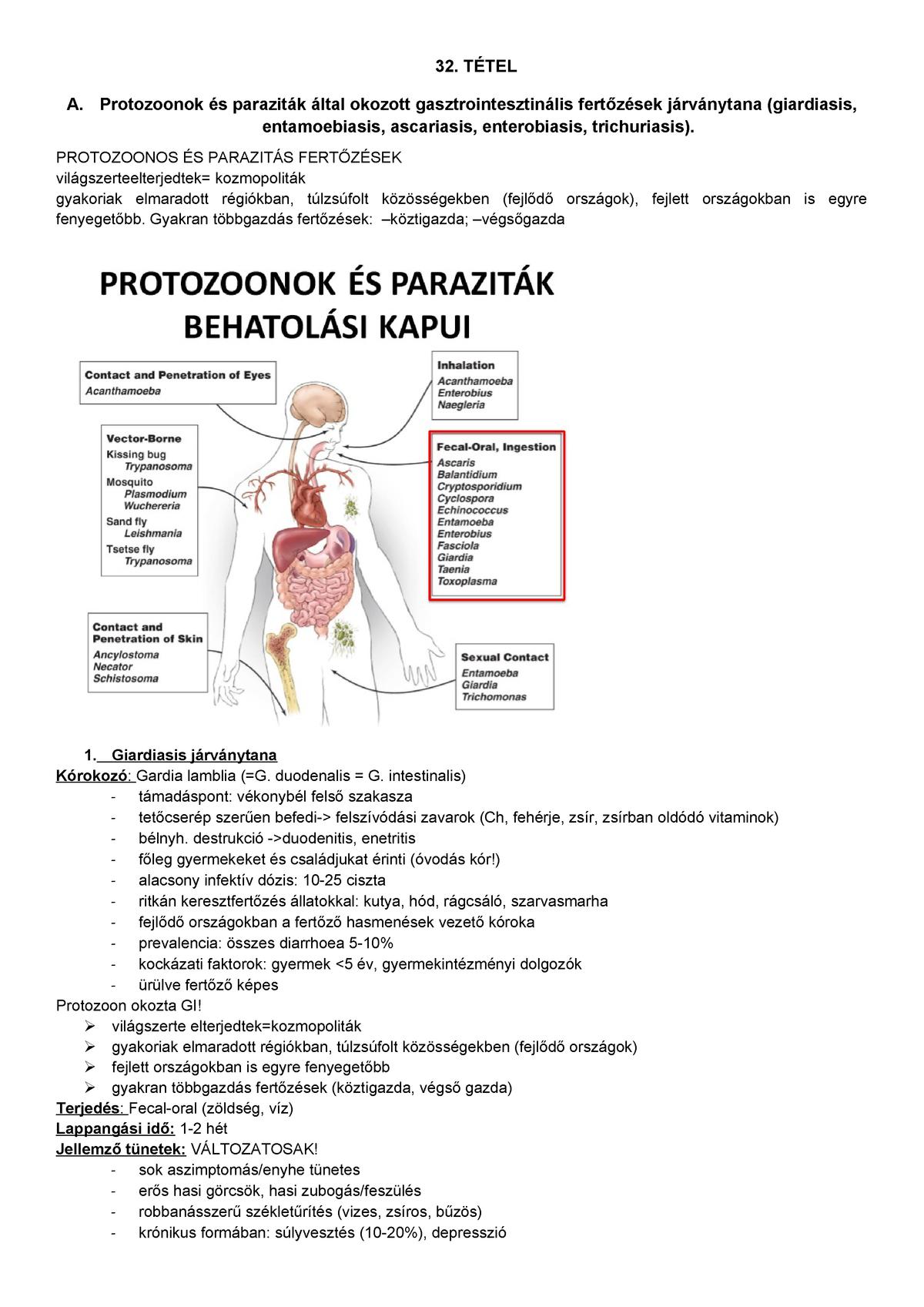 enterobiosis kockázati tényezők)
