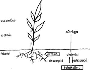 Humusol - Bioalternativa