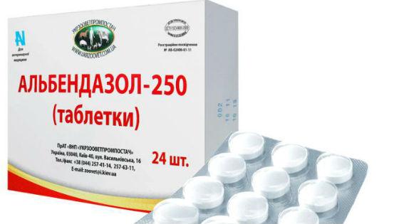hogyan lehet kenet gyermekek számára tabletták férgek ellen