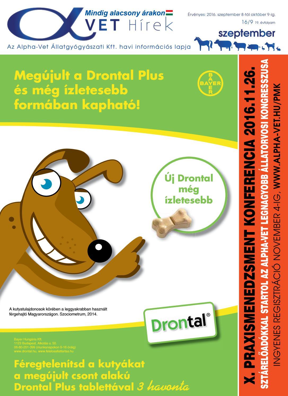 hatékony pinworm tabletta