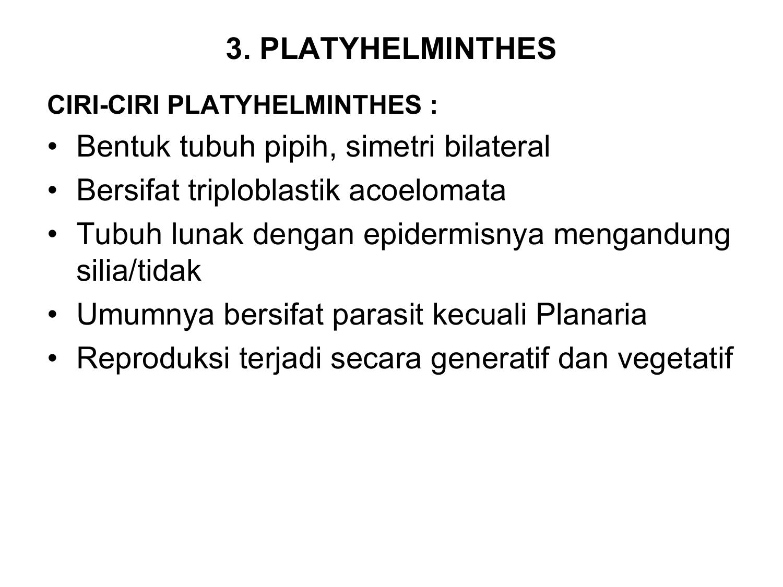 kelas filum nemathelminthes jumeau paraziták