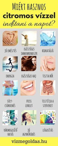 anti giardia diet