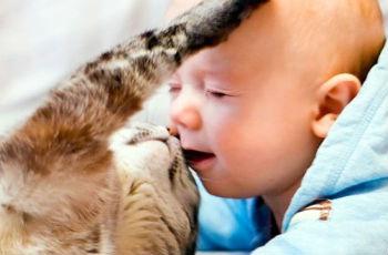 enterobiosis tünetei egy gyermekben