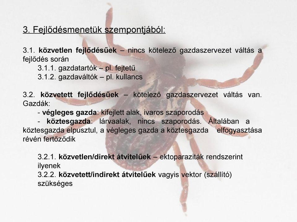 a parazita és a gazdaszervezet közötti kapcsolat)