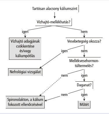 Vidotin 4 mg tabletta – MDD