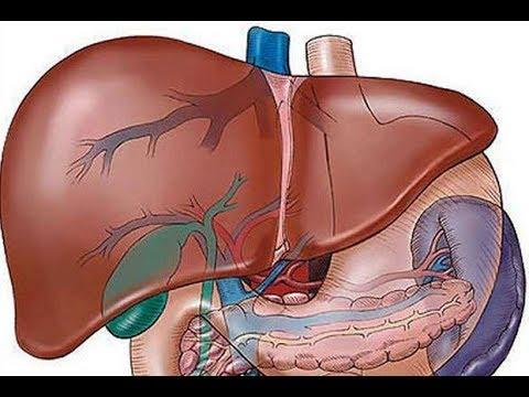 opisthorchiasis hatása a hajra