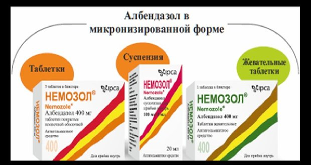 Hogyan adjunk antihelmintikus tablettákat helyesen)