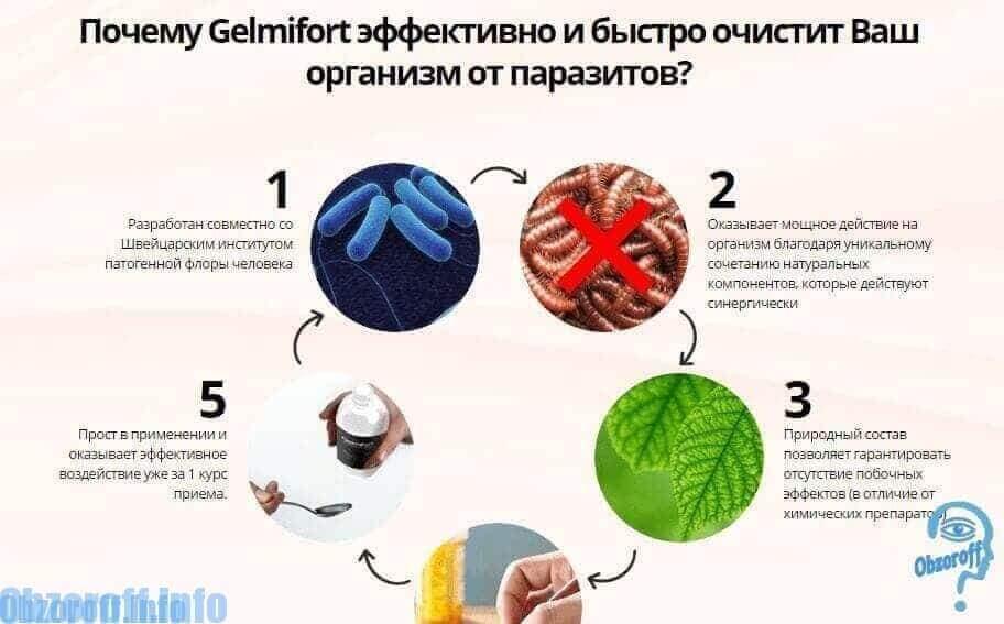 parazitakezelési periódusok)