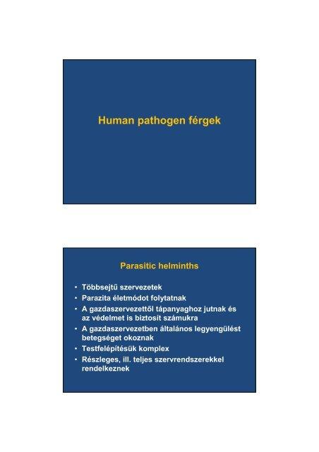 a férgek a helminthiasis)