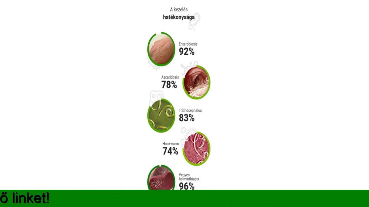 a férgek gyógynövényes kezelésének eredménye