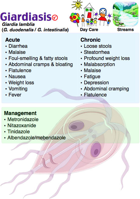 Indications associated with oils - Giardia infection in babies