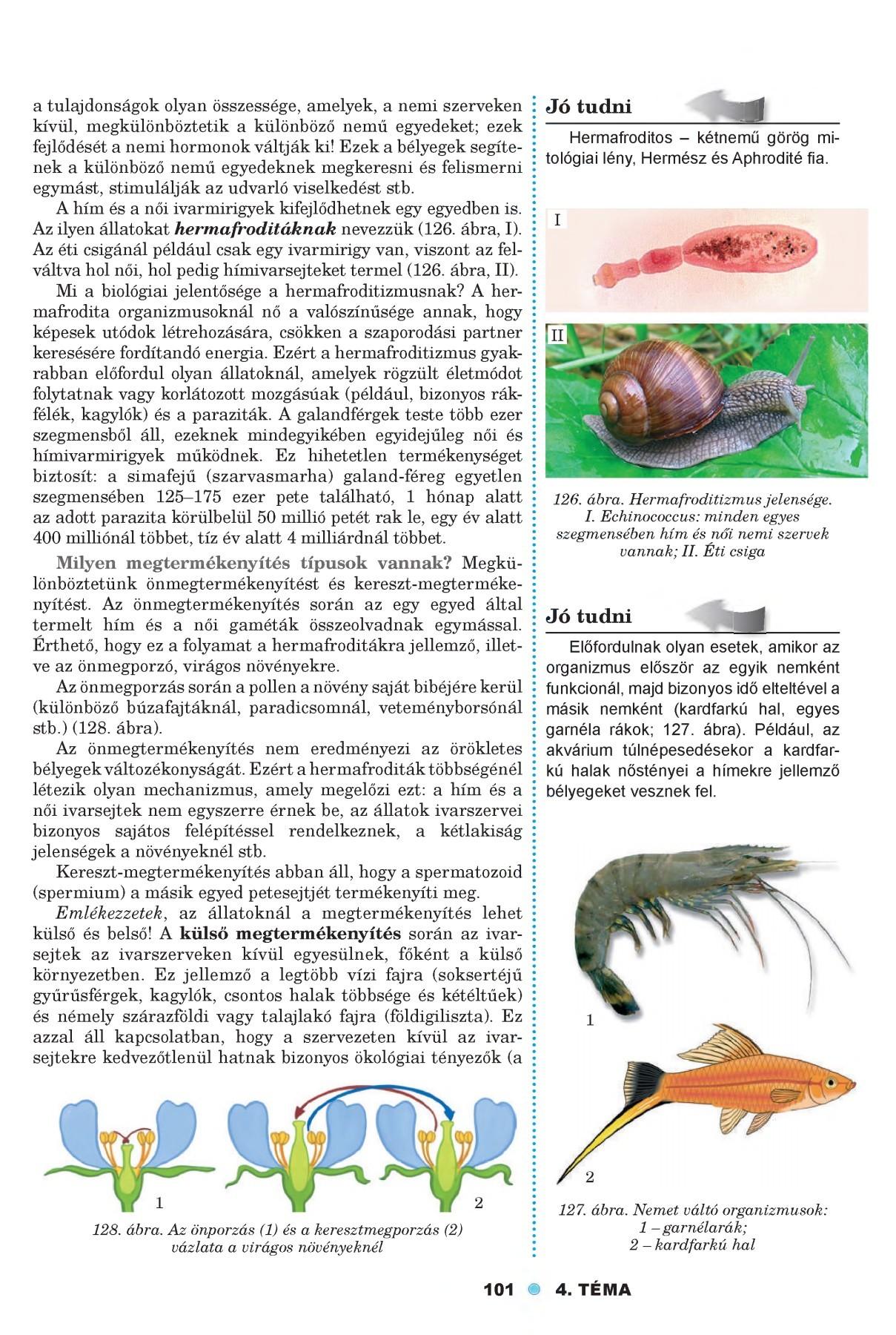 az organizmusok paraziták biológia)