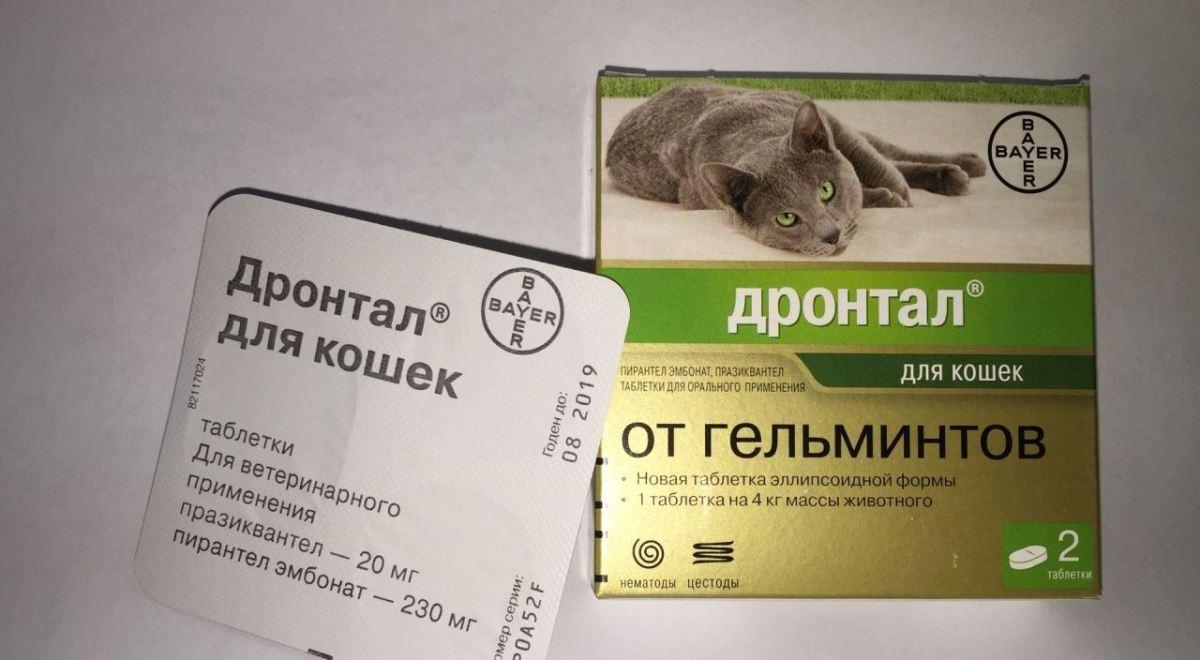 antihelmintikus gyógyszer oltás előtt)