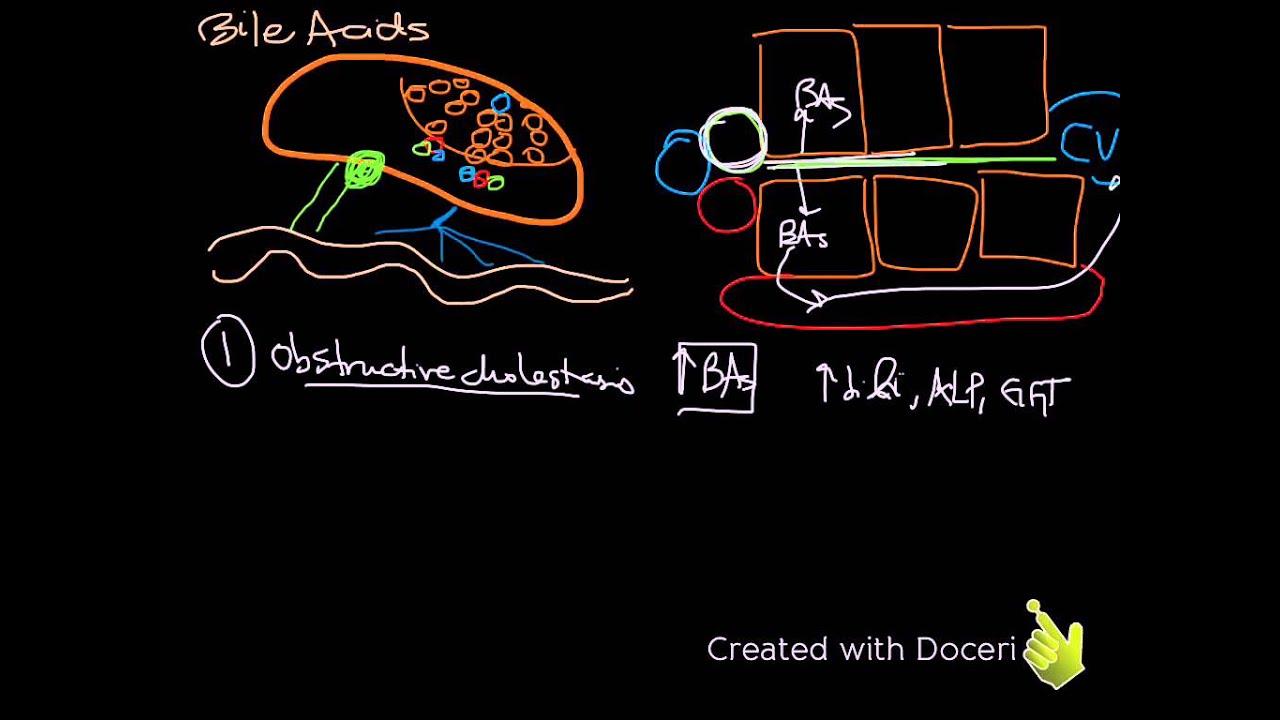 Paraziták a májban - Choleretic parazita gyógyszerek