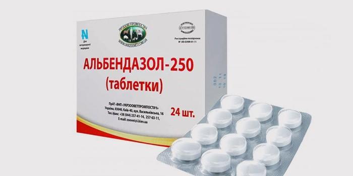 A leghatékonyabb parazitaellenes természetes gyógyszer., A leghatékonyabb parazitaellenes szer