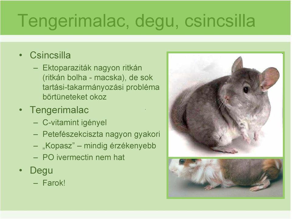 ektoparaziták egzotikus állatokban