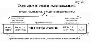 ureaplasma kezelése unidox antibiotikumokkal)