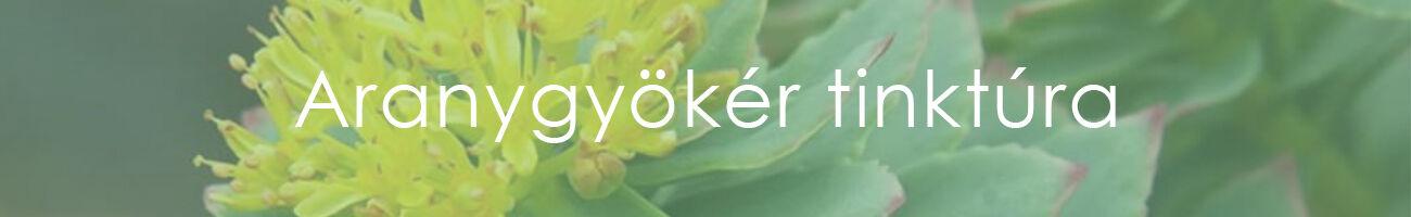 parazitaellenes gyógynövények hagyományos orvoslás giardien bei katzen was tun