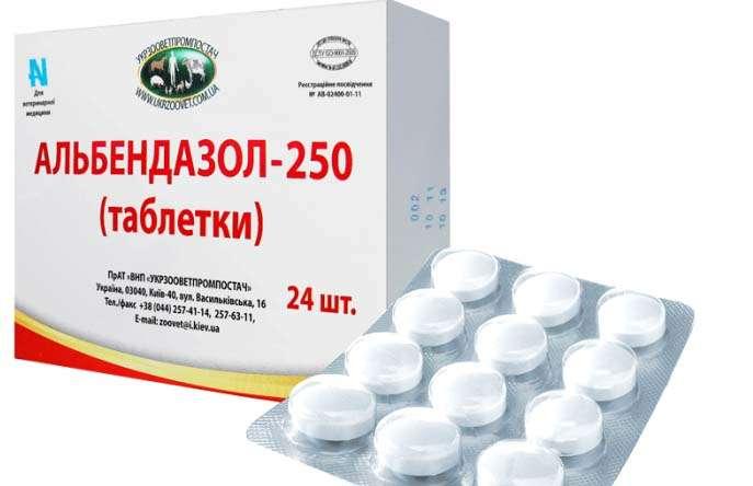 olcsó antihelmintikus gyógyszerek az emberek számára