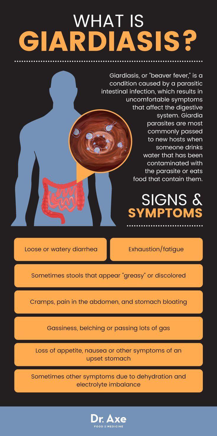 giardia stomach bug symptoms)