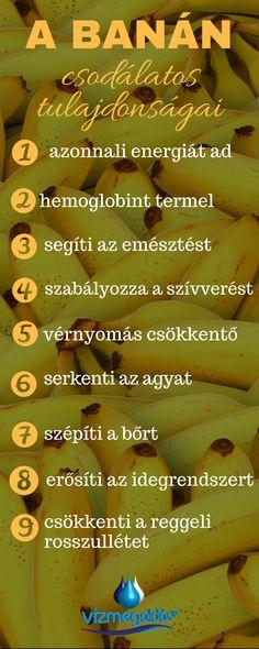 parazitaellenes reggeli ital