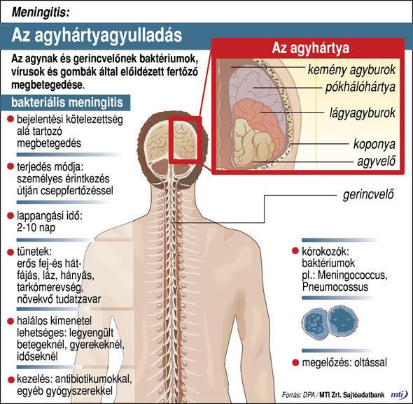 paraziták által okozott betegségek)