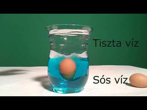 enterobiosis, hogy néz ki a tojás)