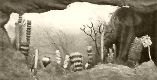 recept urom paraziták parazita 12 sorozat