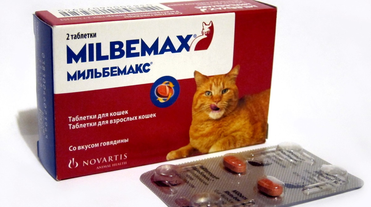 hogyan lehet tablettát adni a férgeknek)