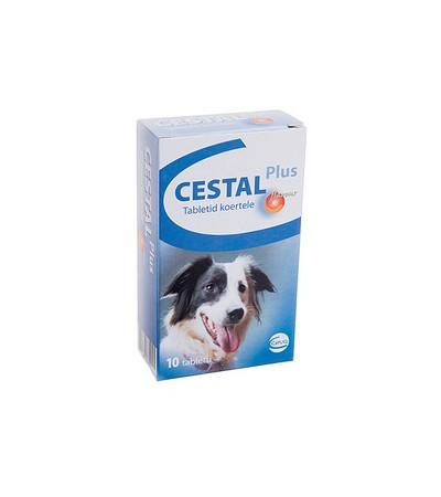 Dehinel Plus Flavour tabletta kutyák számára x   Krka Magyarország