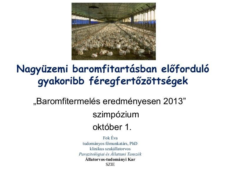 endoparaziták állatokban)