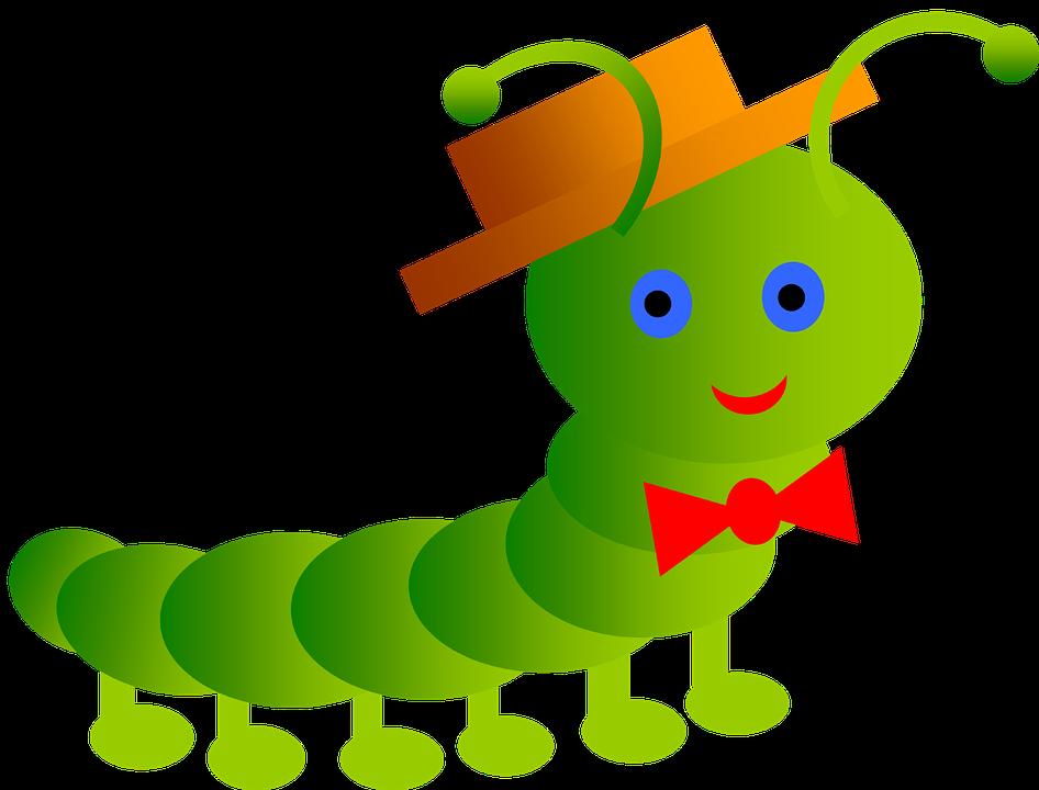 Orenburg paraziták kezelése - Pinworms csiki